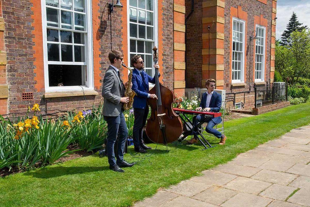 jazz trip in a garden