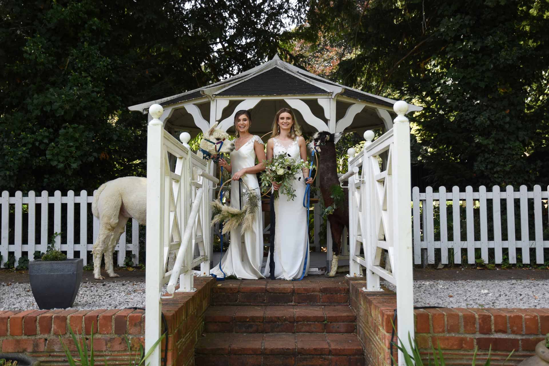 fun luxury wedding at the Elephant Hotel, Pangbourne