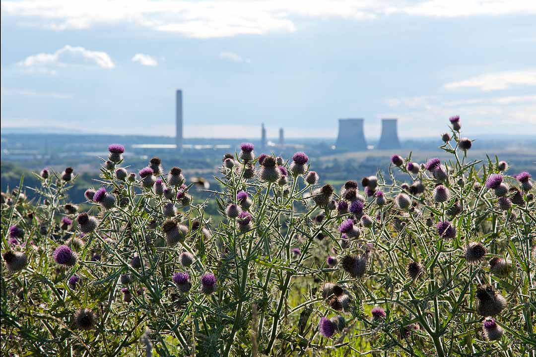 The view of Didcot power station from the top of Wittenham Clumps, Oxfordshire