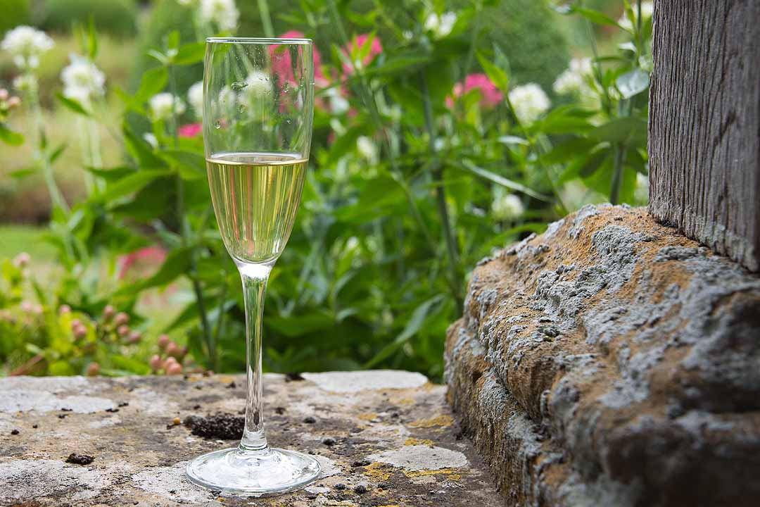 Glass of champagne on a garden wall
