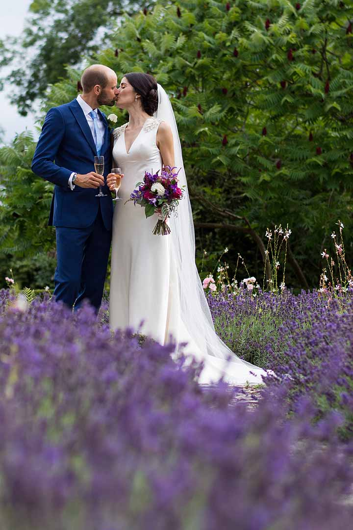 Bride and groom kissing in lavender garden